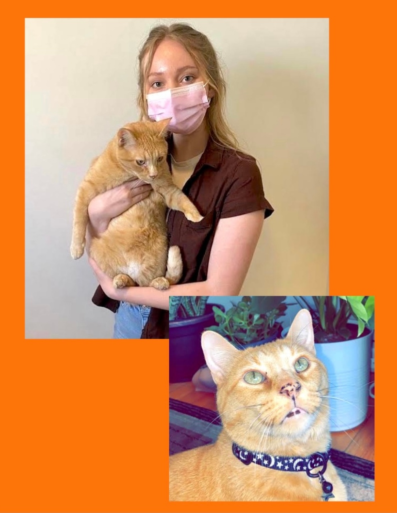 Testimonial for Shannon of Animal Love Languages from Ally and Jasper the rescue cat