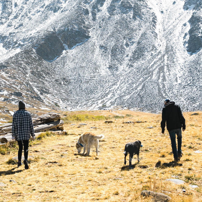 two people hiking with two dogs - animal communication with Shannon of Animal Love Languages
