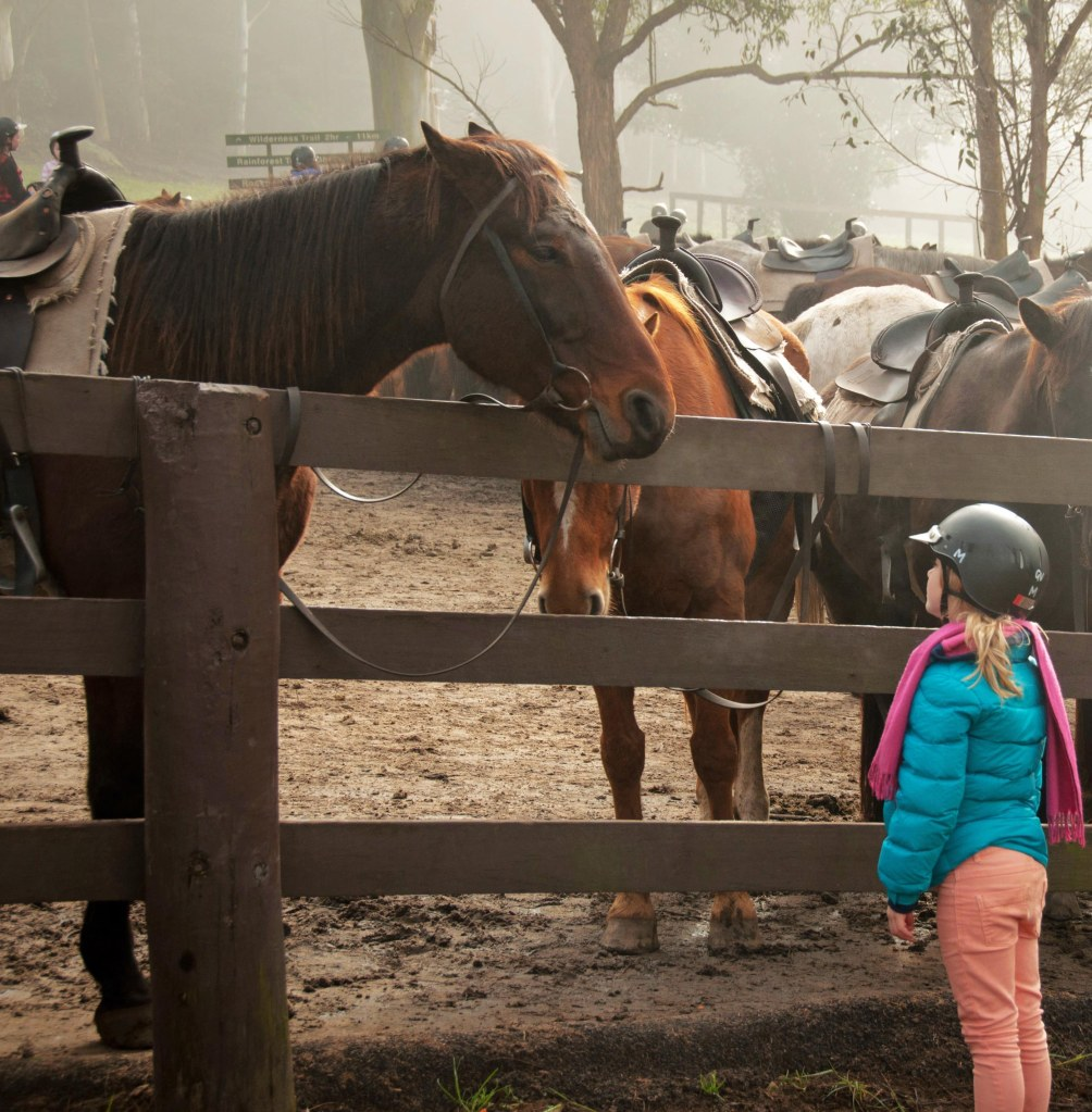 girl talks to horse - animal communication with Shannon Cutts of Animal Love Languages