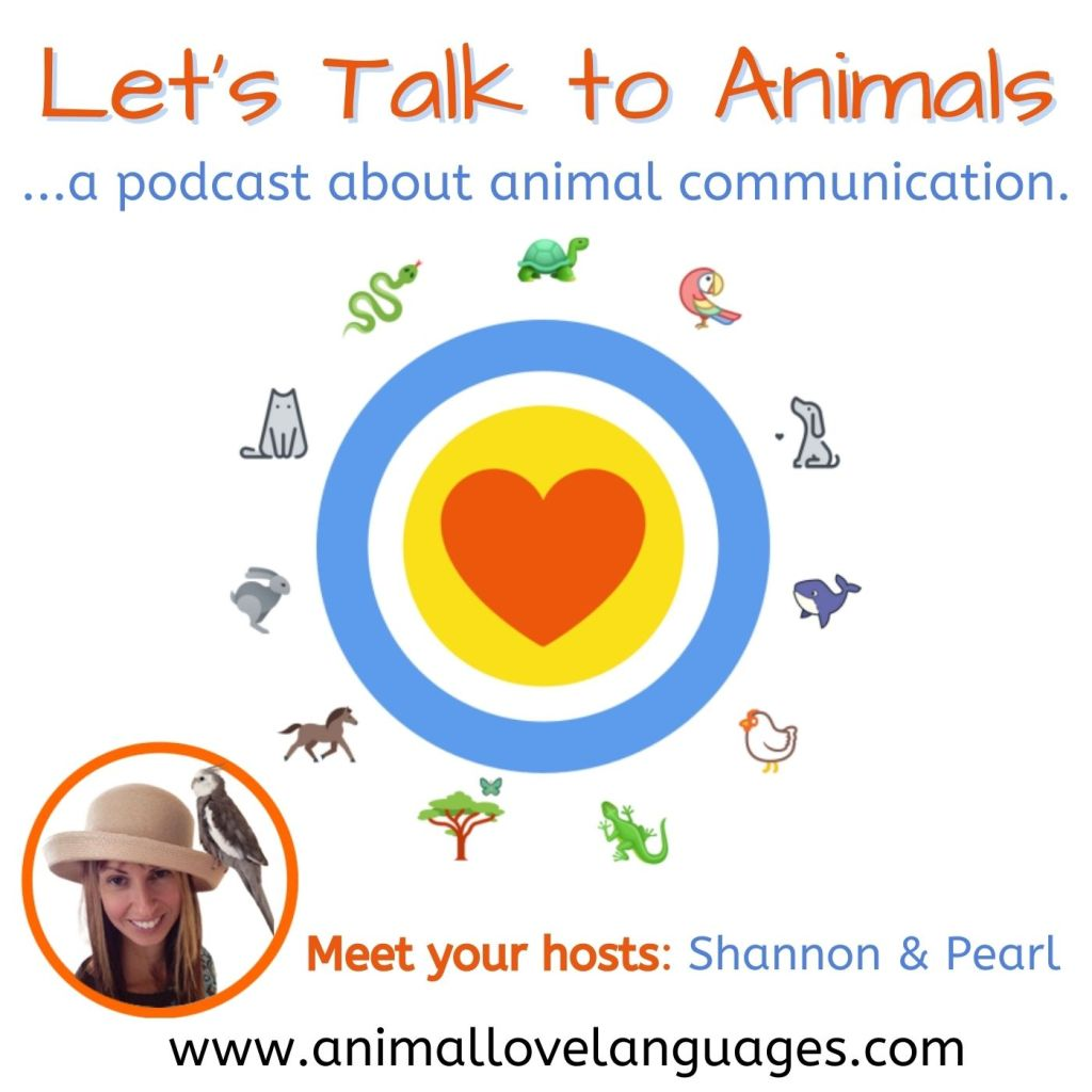 Let's Talk to Animals podcast and YouTube series about animal communication with host Shannon Cutts of Animal Love Languages