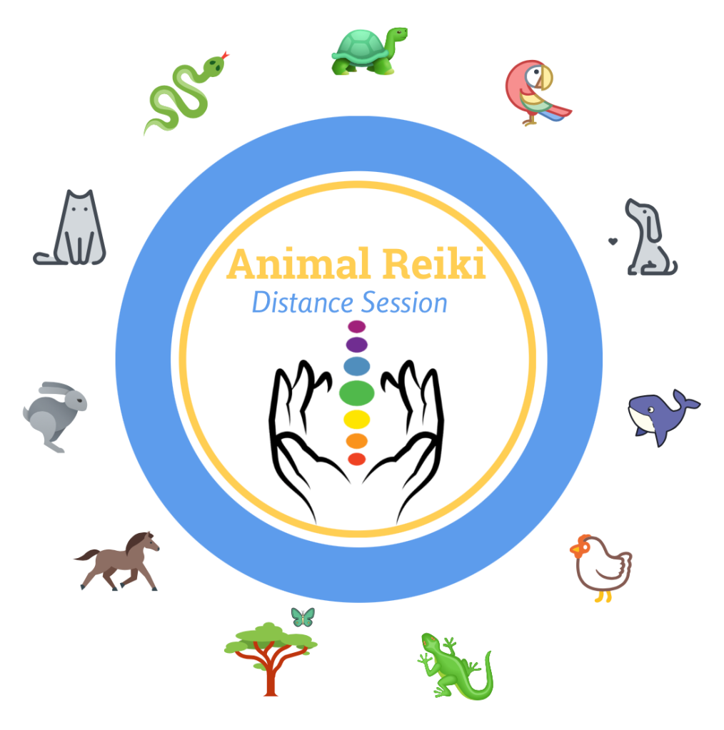 Distance animal Reiki with Shannon Cutts of Animal Love Languages