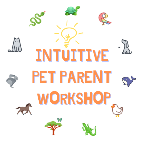 Intuitive Pet Parent Workshop with animal communicator Shannon Cutts of Animal Love Languages